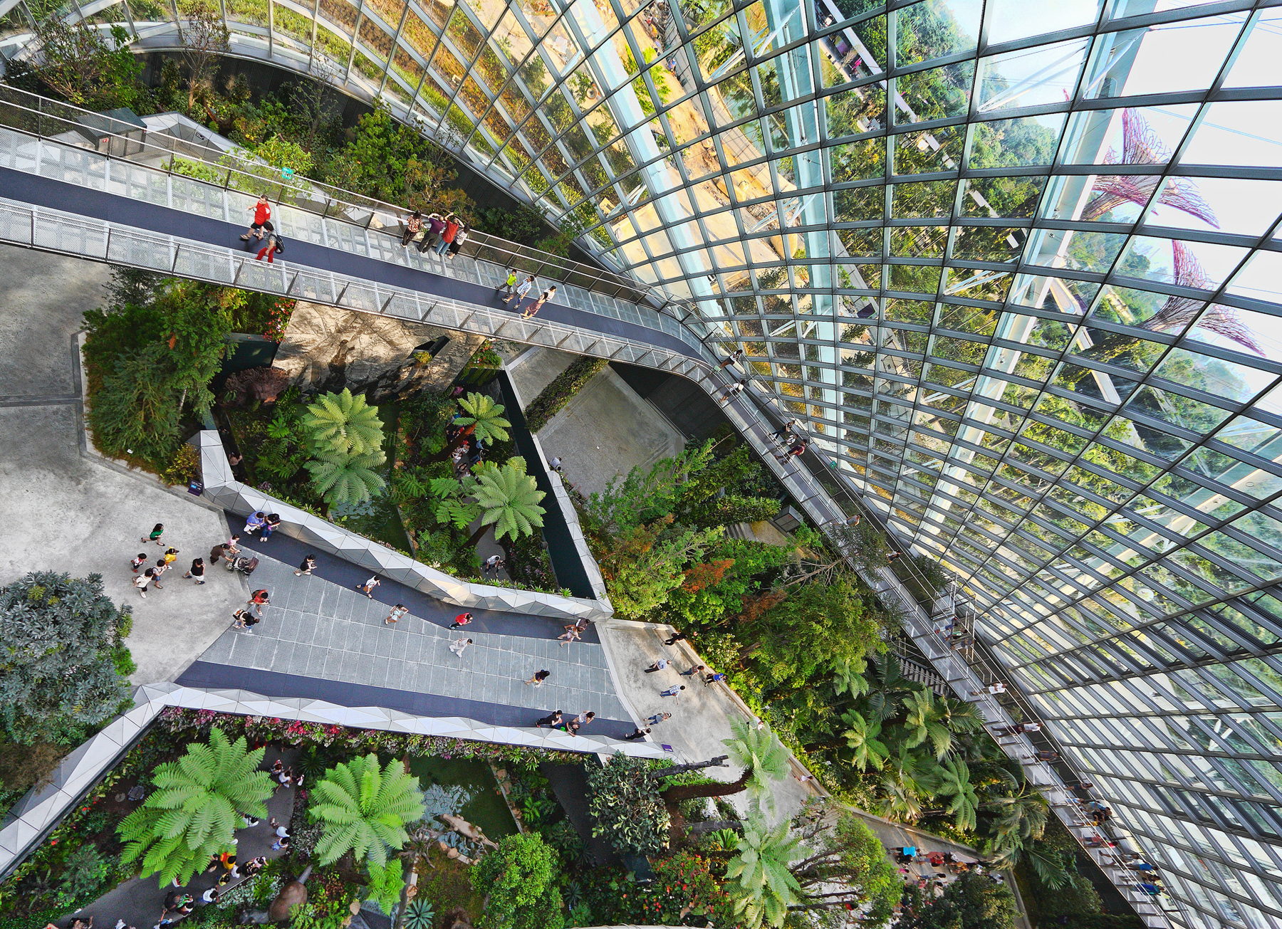 Garden By The Bay Cloud Forest the winding way | a certain slant of light photography