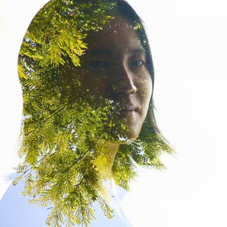 Green Leaves III
