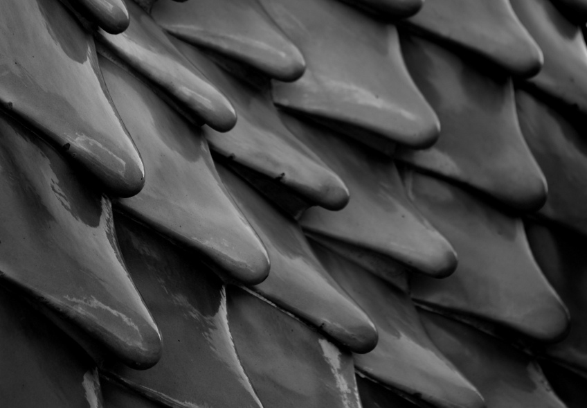 The scales of the dragon - found atop the building. Would not look out of place in a playground.